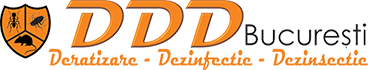 DDD Bucuresti